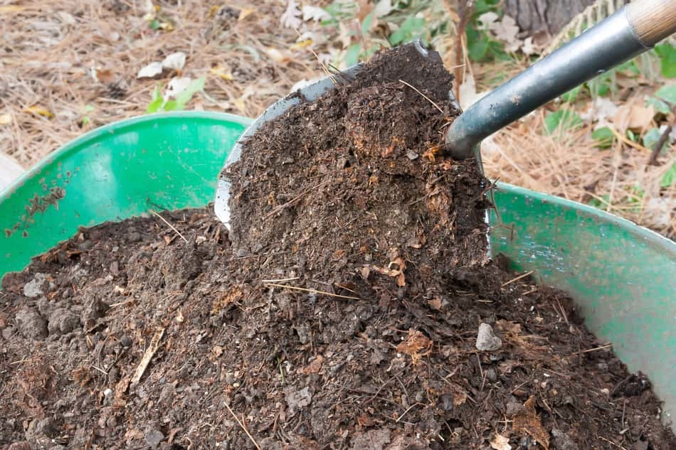 using compost to insulate your greenhouse