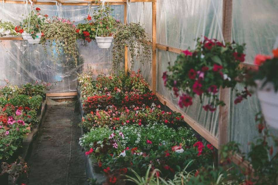 using shade to cool a greenhouse