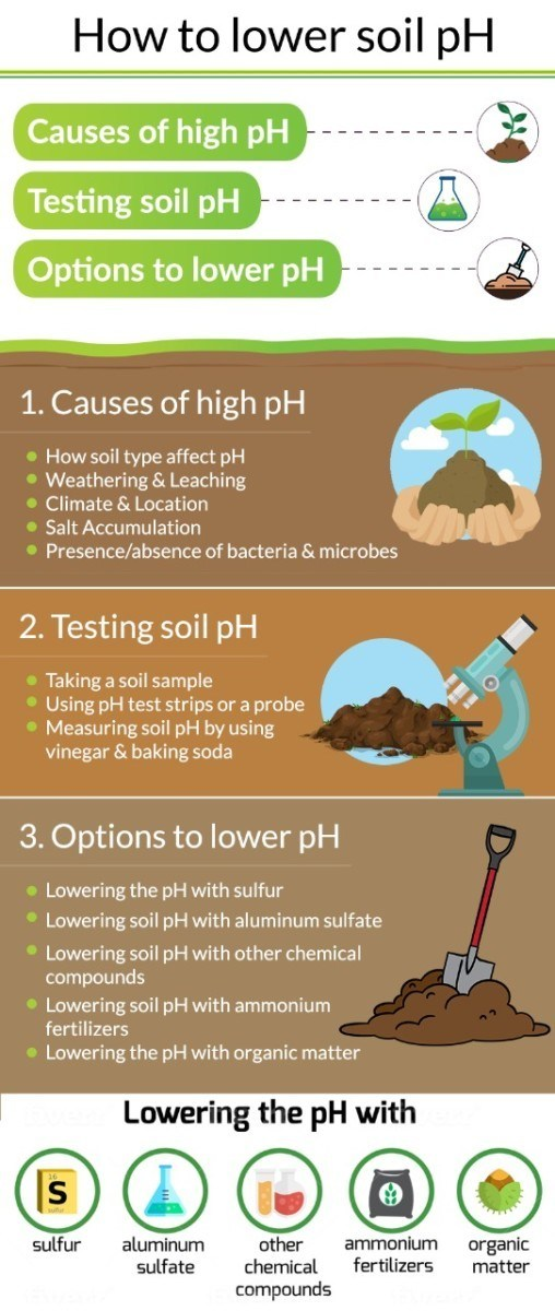 How to Lower Soil pH - article summary