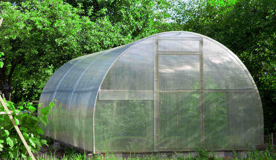 questions related to how to use a greenhouse