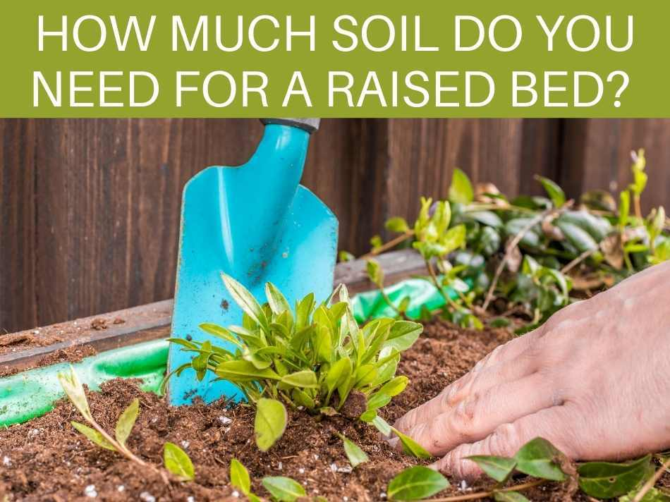How Much Soil Do You Need For A Raised Bed?