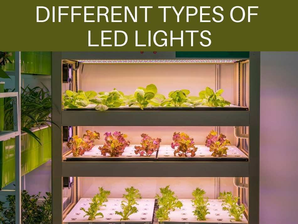 Different Types Of LED Lights