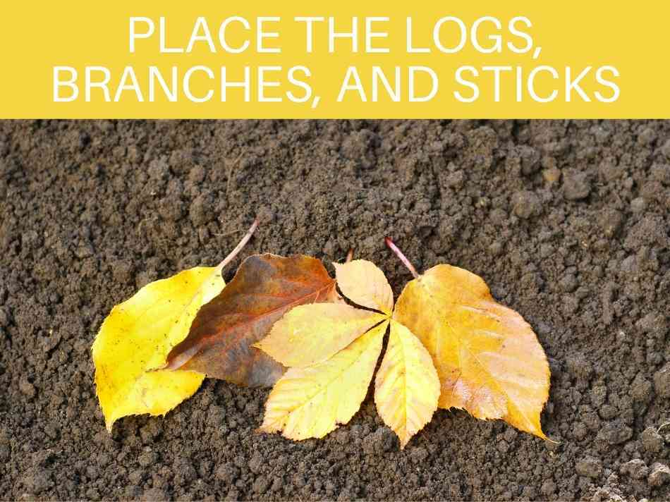 Place The Logs, Branches, And Sticks