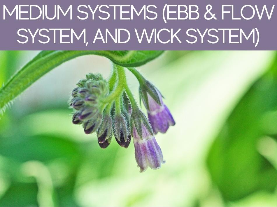 Medium Systems (EBB & Flow System, And Wick System)