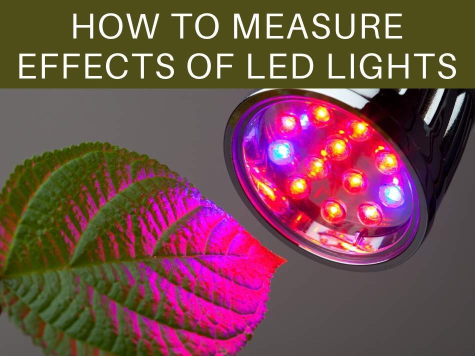 How To Measure Effects Of LED Lights