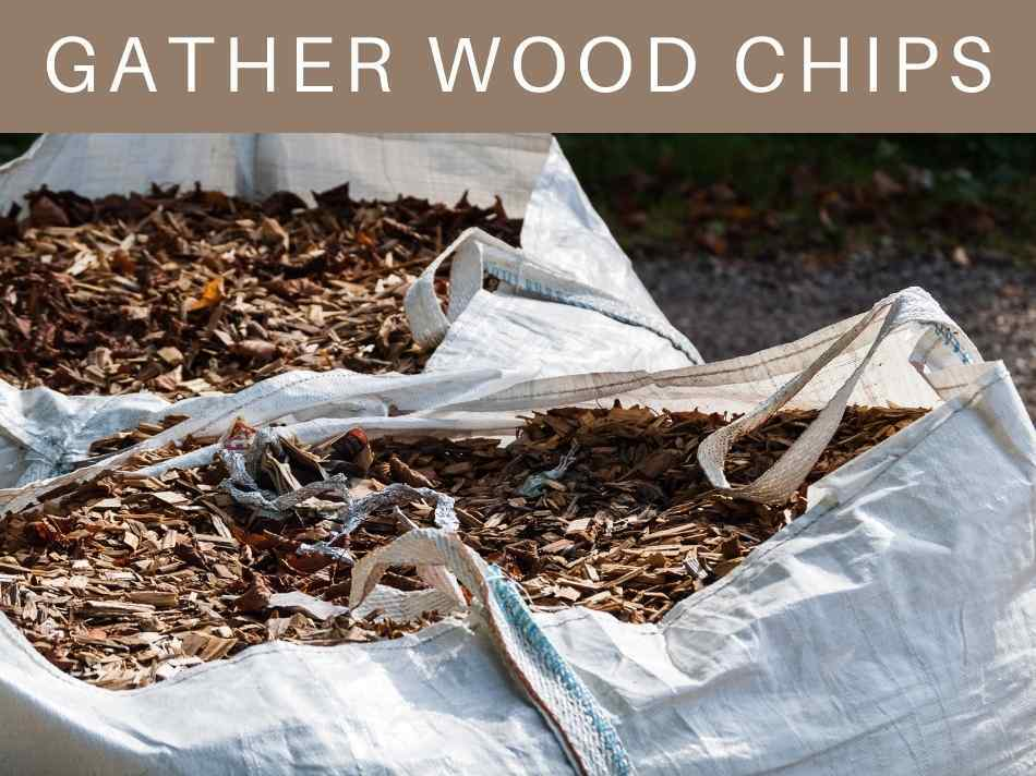 Gather Wood Chips