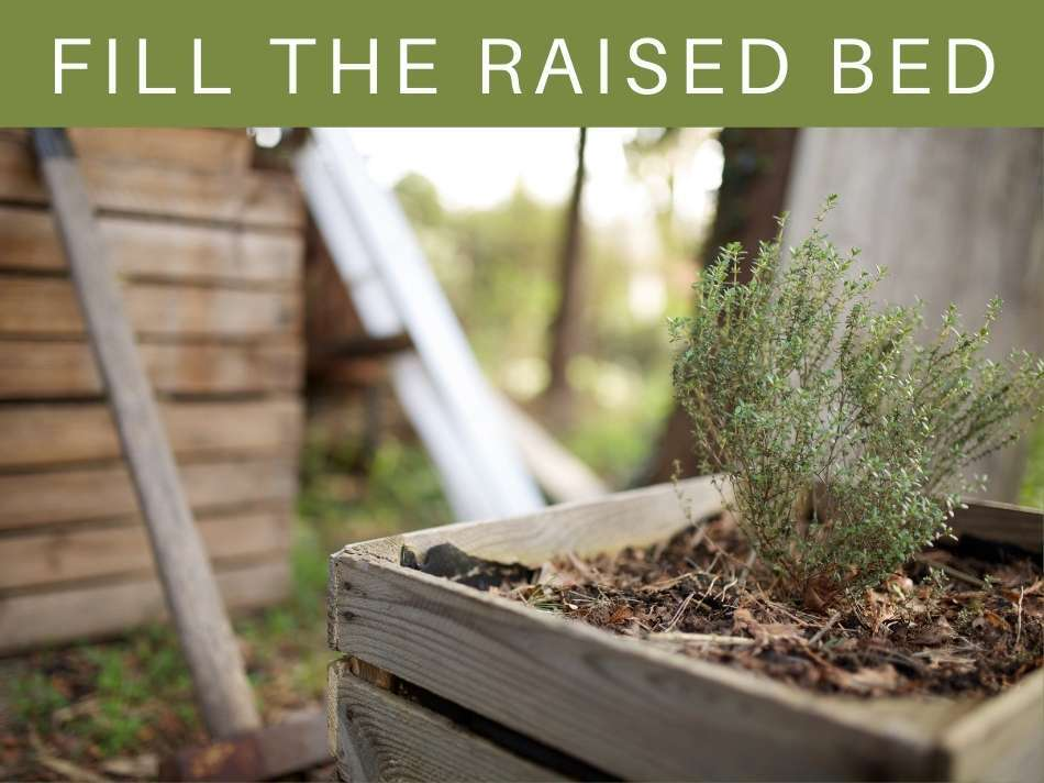 Fill The Raised Bed