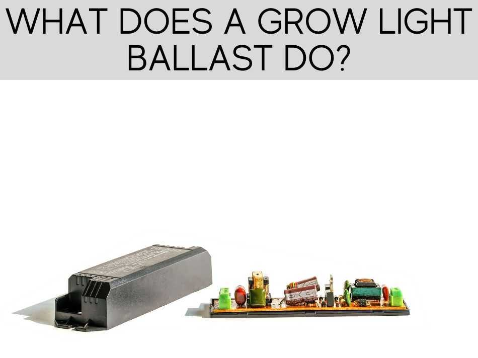 What Does A Grow Light Ballast Do?