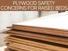 Plywood Safety Concerns For Raised Beds