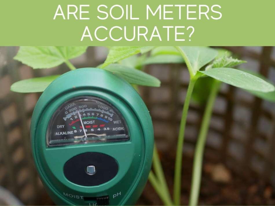 Are Soil Meters Accurate?