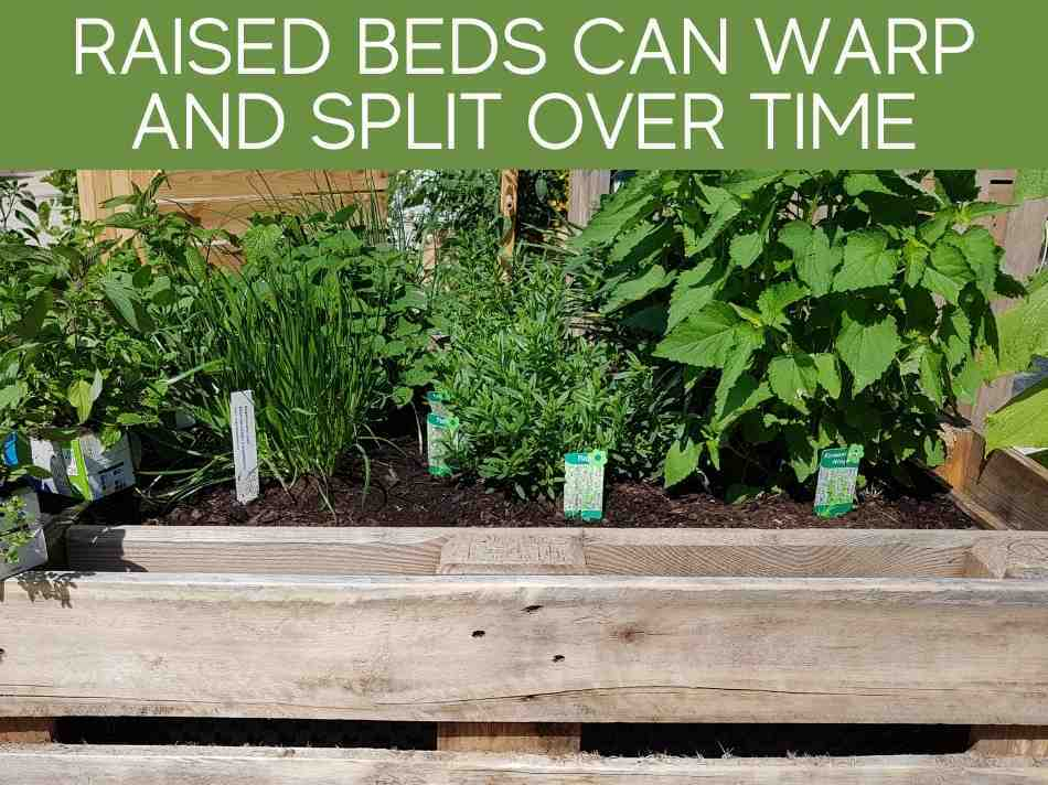 Raised Beds Can Warp And Split Over Time