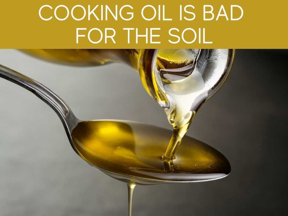 Cooking Oil Is Bad For The Soil