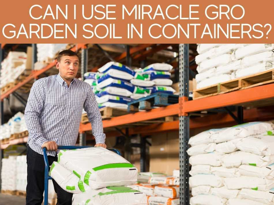 Can I Use Miracle Grow Garden Soil In Containers?
