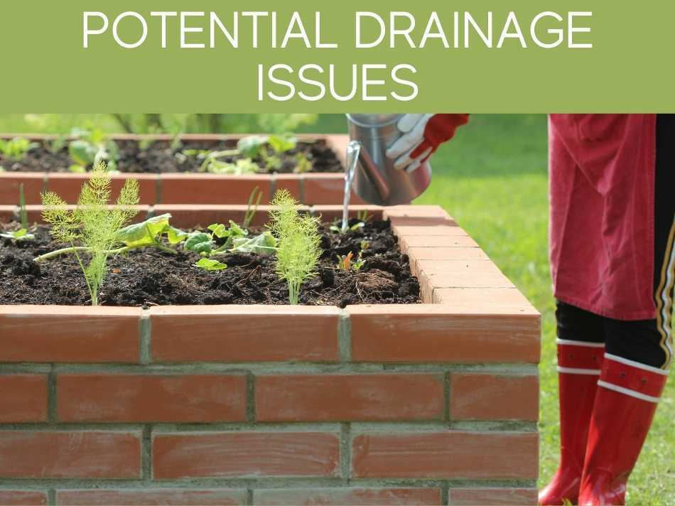 Potential Drainage Issues