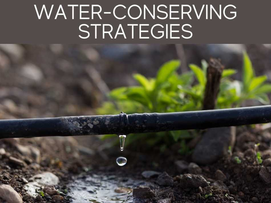 Water-Conserving Strategies