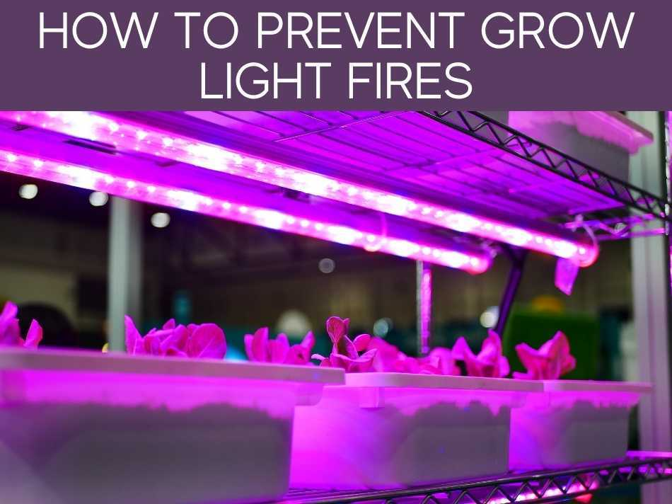 How To Prevent Grow Light Fires