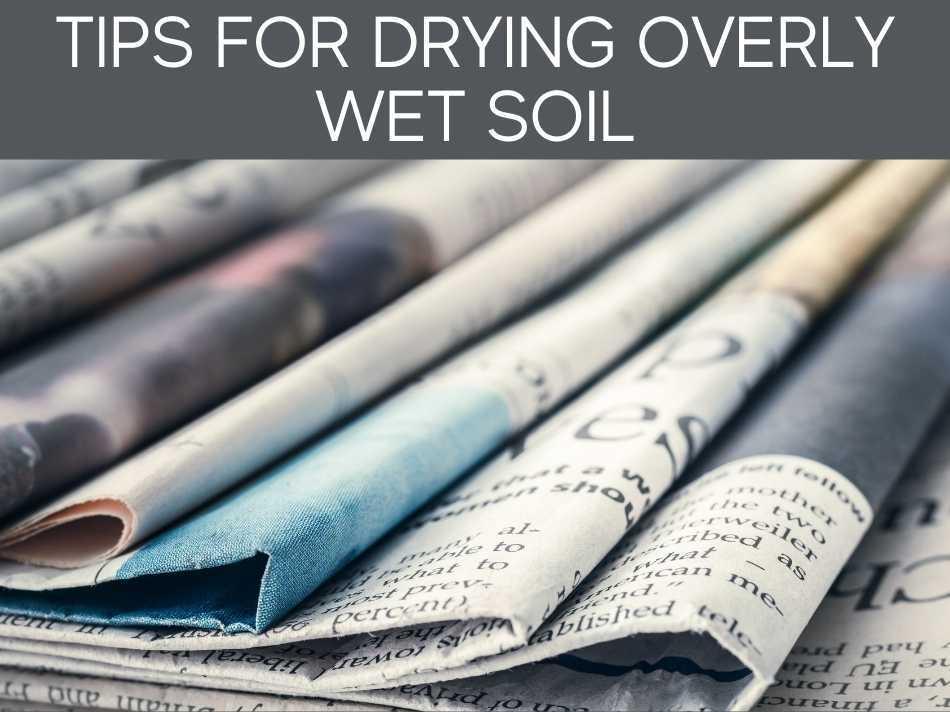Tips For Drying Overly Wet Soil