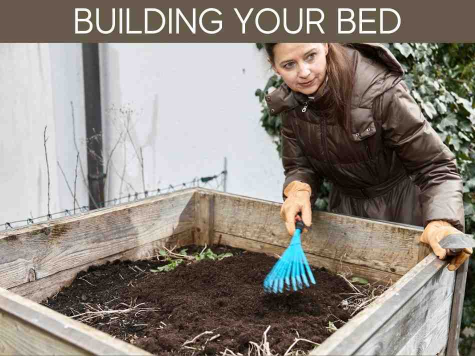Building Your Bed