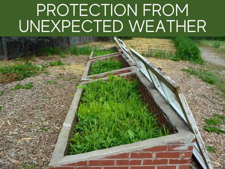 Protection From Unexpected Weather