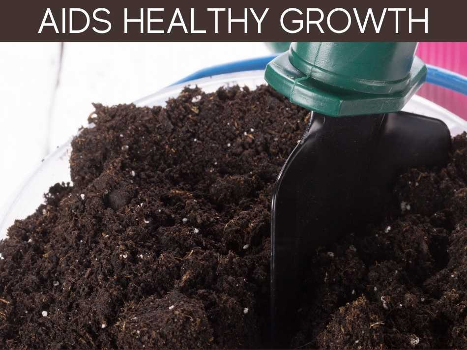 Aids Healthy Growth